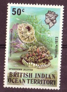 postage stamps from oceany | British India Ocean Territory | Postage stamp : 切手