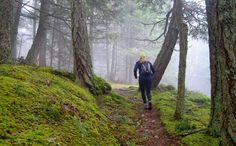 Trail of the Month: Orcas Island, Washington: I want to run this!