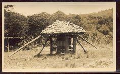 Un Trapiche / Old Sugar Mill