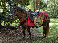 Crinet Crest of Neck Foam Armor for horses or ponies - Criniere Medieval Equine Armor Barding Costume - Equine Neck Armor Costume Truck Bed Liner, Foam Armor, Horse Armor, Wood Burning Tool, Horse Costumes, Essential Oil Jewelry, Gifts For Horse Lovers, My Buddy, Metal Buckles