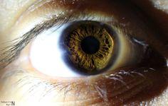 Gray Eyes, Blue Eyes, Grey Eyeshadow, Most Beautiful Eyes, Hazel Eyes, Eye Shapes, Dark Side, Body Care, Iris