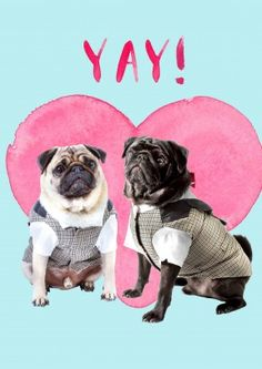 Yay!+Dogs+|+Wedding+Card+|+JA1074 Gay Wedding. Jolly Awesome for Scribbler