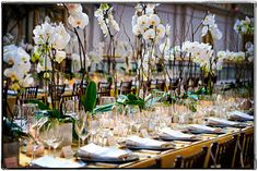 boda moderna, centros de mesa modernos con orquideas www.wowqueboda.com