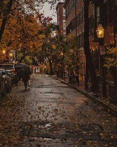 My Life in the Countryside Autumn In New York, Autumn Aesthetic, Cosy Aesthetic, Autumn Cozy, Autumn Photography, All Nature, Hello Autumn, Autumn Inspiration, Happy Fall