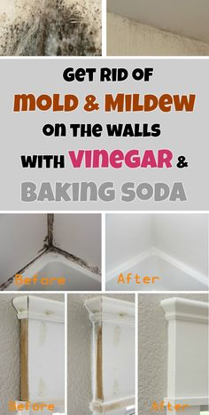Get rid of mold & mildew on the walls with vinegar and baking soda.