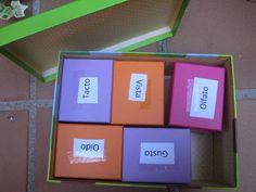 Tu regalo estrella: La caja de los 5 sentidos