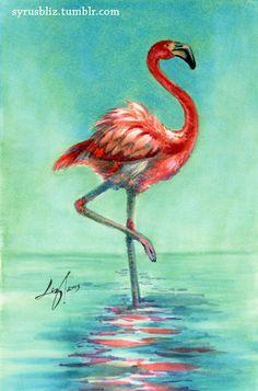 Flamingo by syrusbLiz