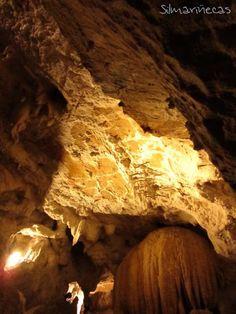 Señorío de Bertiz y cuevas de Urdax. Valle del Baztán.