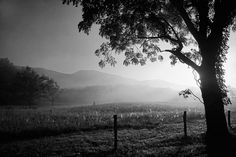Cades Cove landscape in East Tennessee