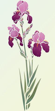 Iris Stencil 2