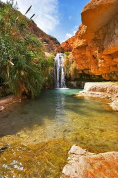 Ein Gedi National Park, an oasis near Dead Sea