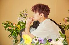 Baby Cubes, Yoo Seonho, Flower Boys, Kpop, Appreciation, Korea, Boyfriend, Husband, Artists
