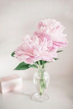 Pink Flower Arrangements, Peonies Centerpiece, Vase Centerpieces, Bud Vases, Flower Vases, Wedding Centerpieces, Pink Peonies, Pink Roses, Pink Flowers