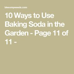 10 Ways to Use Baking Soda in the Garden - Page 11 of 11 -