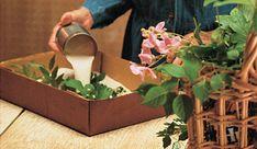 Secar las flores nos permite mantenerlas más tiempo como elemento decorativo para nuestro hogar. Así disfrutaremos durante más tiempo de los productos más bellos de nuestro jardín. Como sabéis hay …