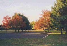 Armitage park Eugene Oregon