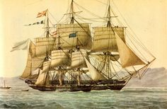 Frigate and sloop -