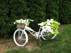 My garden bicycle
