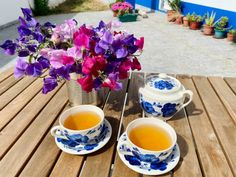 Ervilhas-de-cheiro - Aprenda a cuidar desta planta Tableware, Sweet Peas, Purple Colors, Beautiful Gardens, Take Care, Poisonous Plants, Country, Dinnerware, Tablewares