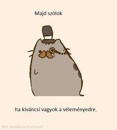 Pusheen Cute, Grumpy Cat, Asd, Funny Moments, Neko, Jokes, Husky Jokes, Memes, Grumpy Cats