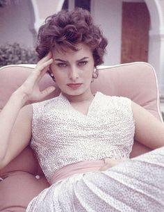 Famous Italians ~ #famousItalians #Italians #celebrities ~ Sophia Loren