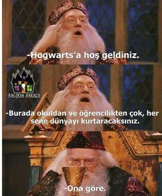 Slytherin Harry Potter, Harry Potter Cast, Harry Potter Movies, Hogwarts, Drarry, Dramione, Harry Potter Wallpaper, Remus Lupin, Tom Felton