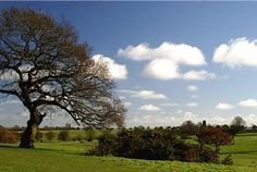 Discover the Yorkshire Wolds | Countryfile.com