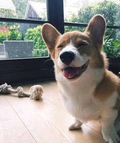 Smile for the camera :)