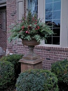 Planters and Pots at the Holidays...ideas galore!