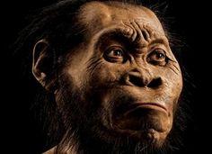 Cientistas dizem ter descoberto um novo parente dos humanos: o 'homo naledi'