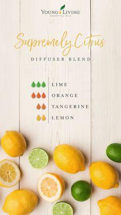 Supremely Citrus Essential Oil Diffuser Blend
