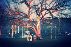 wedding lighting  // Gideon Photography