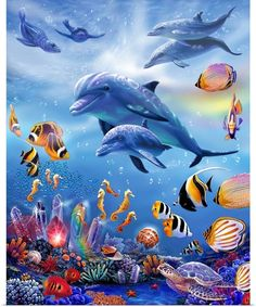 Diy diamond Painting Sea world Dolphins and fish Diamond Embroidery Full Square Diy Kit Drill Nee Sea Dolphin, Dolphin Art, Dolphins Animal, Fauna Marina, Murals Your Way, Underwater Painting, Ocean Creatures, Tier Fotos, Cross Paintings