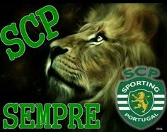 Best Club, Scp, Cristiano Ronaldo, Sports, Animals, Lion Images, Luxury Sports Cars, Angels, Soccer