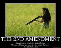 Let's keep it that way, America. Doraemon, Apocalypse, Gun Quotes, Pro Gun, Demotivational Posters, Gun Rights, Thing 1, Poster Pictures, Gun Control