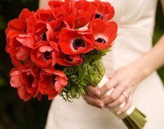 red poppy bouquet