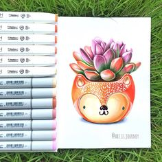 Succulent, pot, fox, botanical, sketch, drawing, marker art by @art.is.journey #Thailand #succulents #phuket #copic