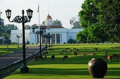 Istana Bogor - Bogor Palace