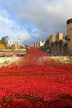 The 888,246 poppies around it are ceramic, and each represents a British military fatality in World War I. | An Incredible Bird's Eye View Of The Ceramic Poppies Outside The Tower Of London