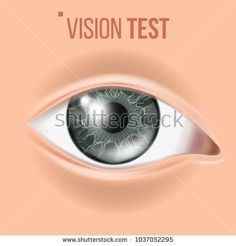 Human Eye Vector. Vision Concept. Clinic Medical Eye Diagnostic. Realistic Detail Illustration