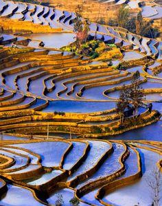 Yuanyang, Yunnan, China