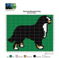 Bernese Mountain Dog Chart