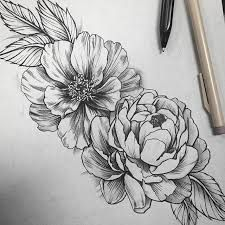 how to draw a peony flower step by step