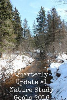 Life on Island Studio: Quarterly Update #1 ~ Nature Study Goals 2016