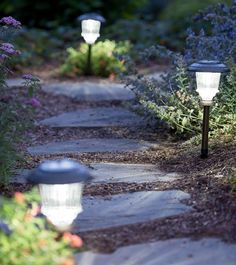 Solar path light