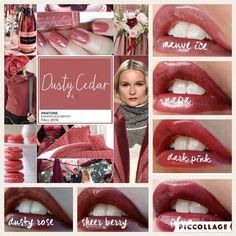 Fall 2016 colors and Lipsense matches Visit my Online Store at https://www.senegence.com/GetLippywithStephanie and order today. Independent Distributor# 206089 Locally Serving the Melbourne & Palm Bay (Brevard County) area of Central Florida, but with online ordering, I gladly service the entire USA!