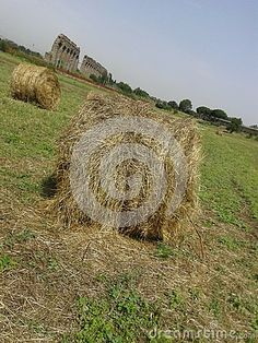 Hay bales in the countryside by Morgan Capasso, via Dreamstime