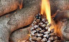 Make Pine Cone Fire Starters