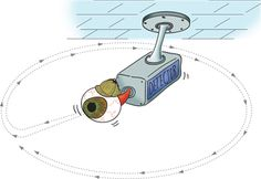 Illuminations: Security Cameras- number of vertices in a polygon and the number of cameras needed to monitor an area