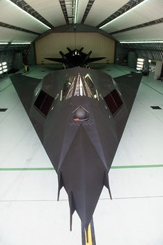 Stealth plane? Sleek!